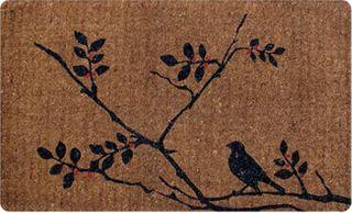 492634cf6f254_BirdINtree reg35