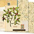 Double-Sided Paper 12inX12 bloom