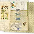 Double-Sided Paper 12inX12 butterflies